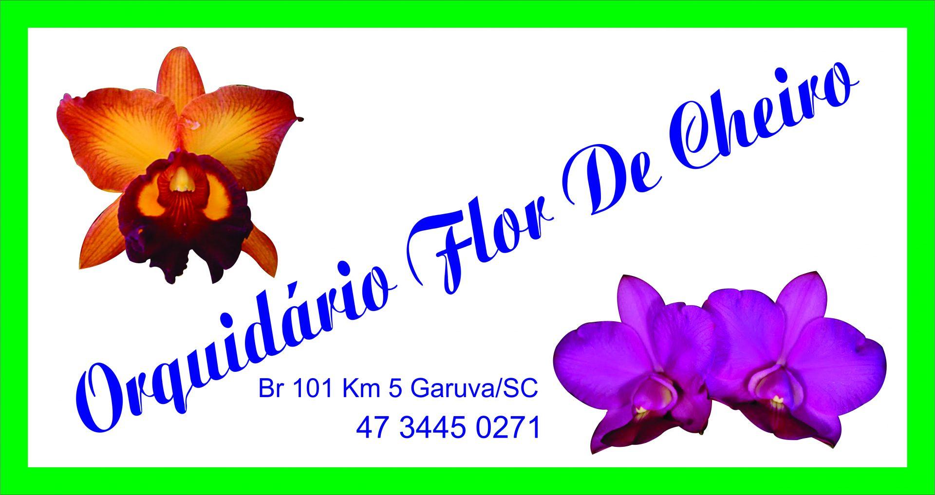 ORQUIDARIO FLOR DE CHEIRO